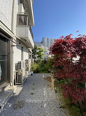 一棟マンション-文京区西片2丁目 オーナー住宅 庭