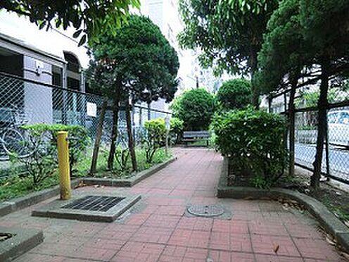 マンション(建物全部)-世田谷区上馬4丁目 周辺環境:上馬二丁目公園