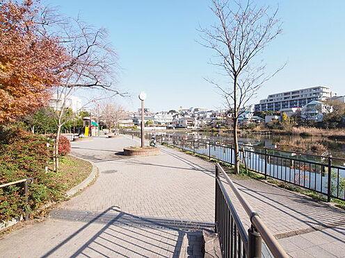 区分マンション-大田区上池台4丁目 小池公園まで703m、『小池公園』まで徒歩3分季節により野鳥の子育ての様子、サギ、カワセミ等が見られます。