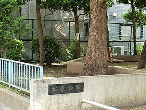 マンション(建物全部)-世田谷区松原5丁目 松原公園