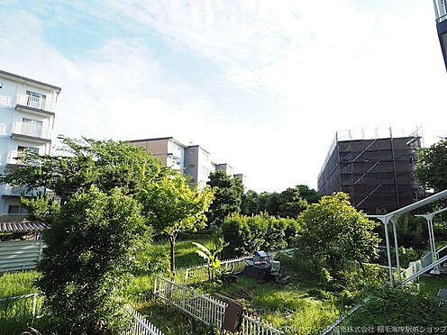 区分マンション-千葉市美浜区高浜3丁目 緑も豊富な敷地内です!