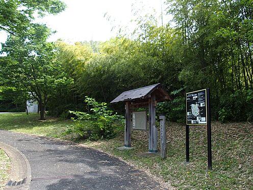 中古マンション-八王子市別所1丁目 近隣の蓮生寺公園