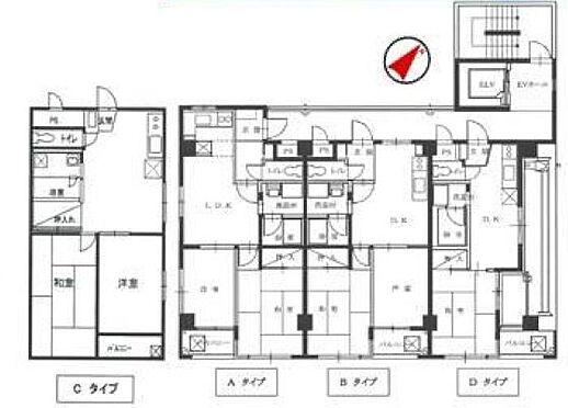 一棟マンション-戸田市美女木3丁目 間取り
