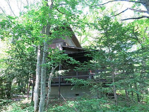 中古一戸建て-北佐久郡軽井沢町大字長倉 庭のから見た建物です。森林浴を満喫していただけます。