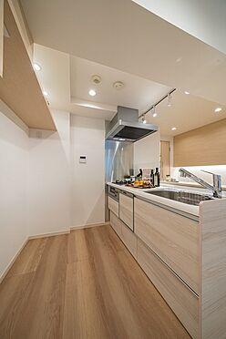 区分マンション-文京区本郷3丁目 食洗機・浄水器一体型システムキッチン