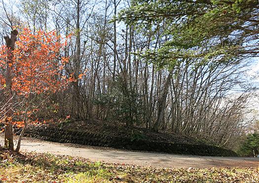 土地-北佐久郡軽井沢町大字長倉鶴溜 北東方向から。緩やかな傾斜ですので、建築しやすい敷地です。