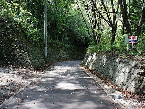 中古一戸建て-北佐久郡軽井沢町大字長倉 前面道路の様子です。舗装道路です。