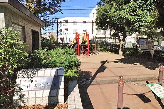 マンション(建物一部)-杉並区上井草1丁目 柿木北公園
