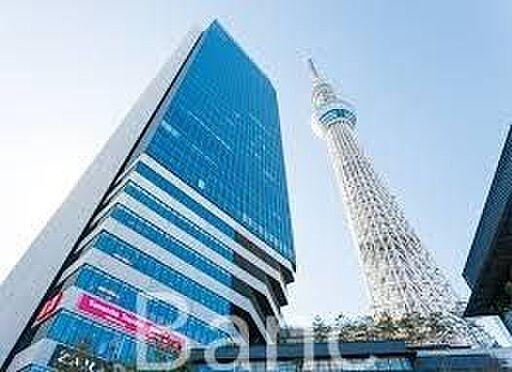 中古マンション-墨田区向島3丁目 私立千葉工業大学東京スカイツリータウンキャンパス 徒歩11分。 850m