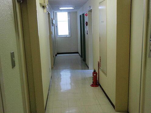 ビル(建物全部)-札幌市西区琴似一条5丁目 共用廊下
