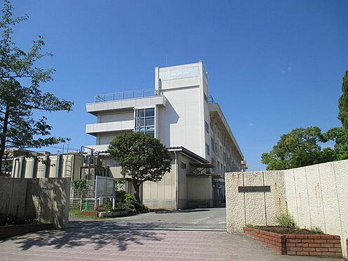 マンション(建物一部)-市川市香取2丁目 周辺