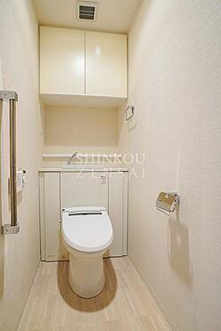 マンション(建物一部)-北上市大通り3丁目 トイレ