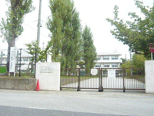 戸建賃貸-浦安市富士見1丁目 浦安市立堀江中学校(500m)