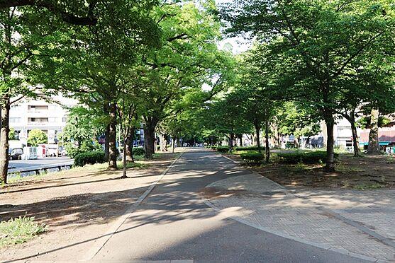 事務所(建物一部)-横浜市中区弥生町2丁目 大通り公園