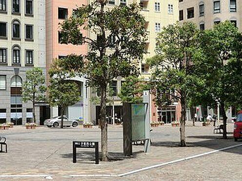 中古マンション-港区芝公園1丁目 周辺環境:汐留西公園