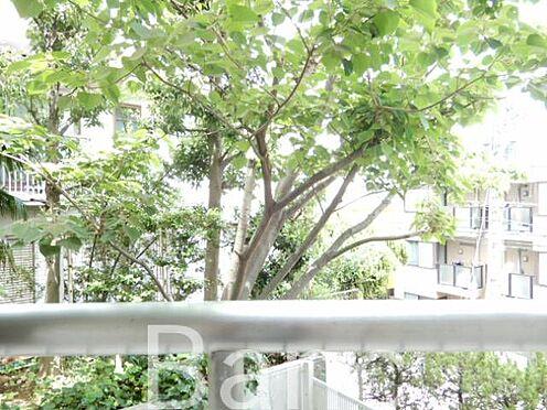 中古マンション-世田谷区若林4丁目 バルコニーからの眺望