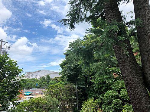 中古マンション-渋谷区千駄ヶ谷1丁目 バルコニーからの眺望