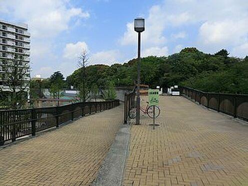 アパート-新宿区上落合3丁目 妙正寺川公園