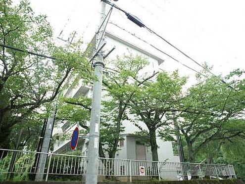 マンション(建物一部)-宝塚市逆瀬台1丁目 その他