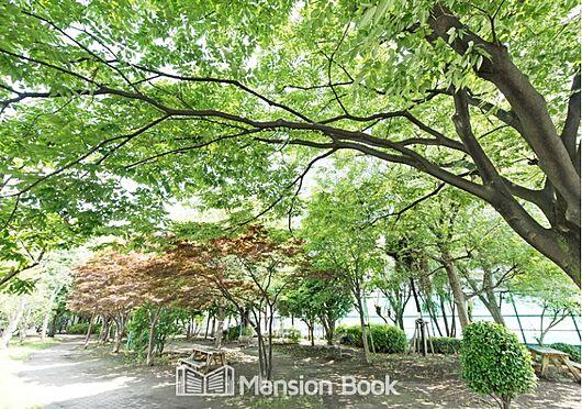 中古マンション-中央区勝どき5丁目 豊海運動公園(467m)