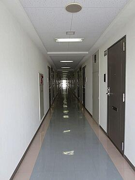 マンション(建物一部)-横浜市緑区十日市場町 廊下