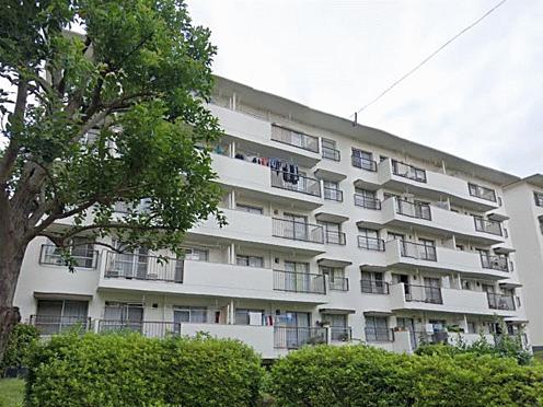 マンション(建物一部)-横浜市旭区左近山 その他