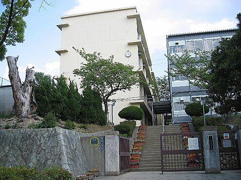 中古マンション-神戸市垂水区小束山本町4丁目 神戸市立多聞東中学校