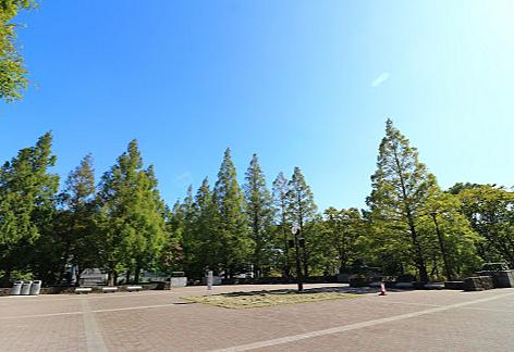 アパート-江東区亀戸8丁目 亀戸中央公園まで 約150m