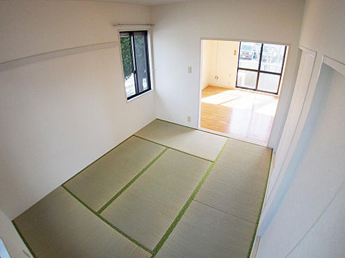 アパート-水戸市姫子1丁目 和室