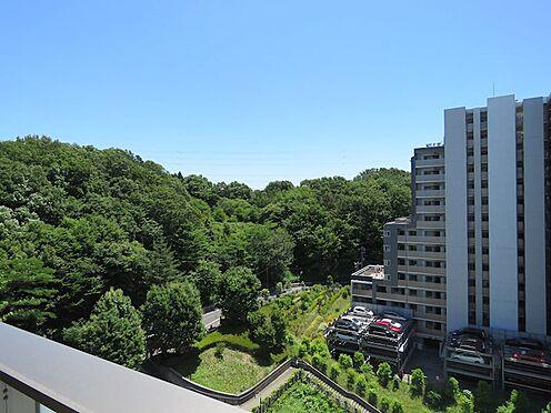 中古マンション-町田市小山ヶ丘4丁目 小山内裏公園の緑を望む眺望です。