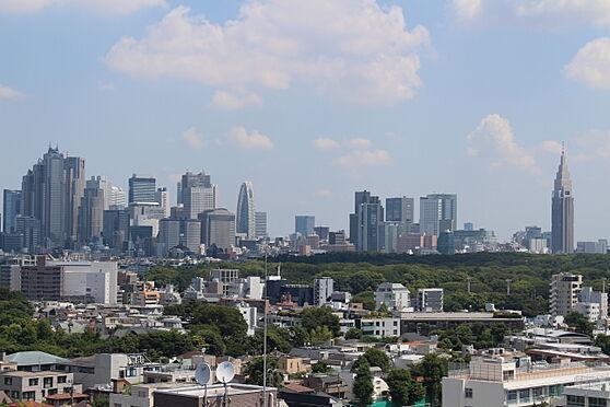 中古マンション-渋谷区松濤2丁目 代々木公園も一望できます。(眺望は永続的に保証されるものではありません)