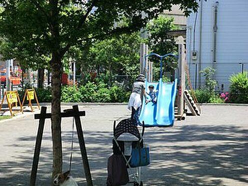 マンション(建物全部)-中野区南台4丁目 七号通り公園