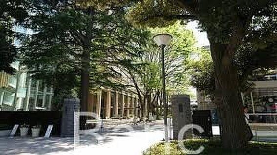 中古マンション-練馬区貫井4丁目 私立武蔵大学 徒歩51分。 4010m