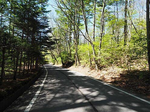土地-北佐久郡軽井沢町大字長倉 前面道路も舗装されており、とてもゆったりとした道路になってます。