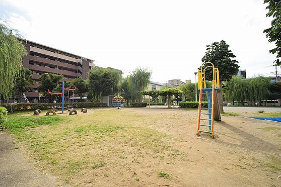 マンション(建物全部)-松戸市新松戸3丁目 目の前に公園がありファミリーの方にもオススメ