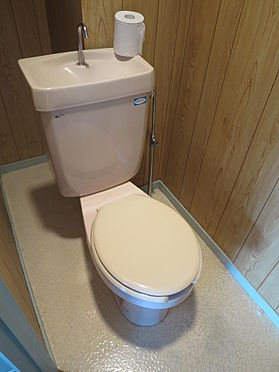マンション(建物全部)-福岡市早良区藤崎1丁目 トイレ