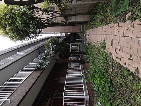 マンション(建物一部)-港区三田2丁目 廊下横通路