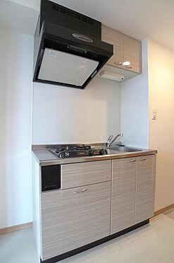 マンション(建物一部)-大田区西糀谷4丁目 2口コントのシステムキッチン