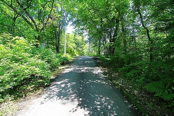 土地-北佐久郡軽井沢町大字長倉 前面道路の幅員は約5m。通行量も少なく静かにお過ごし頂けます。