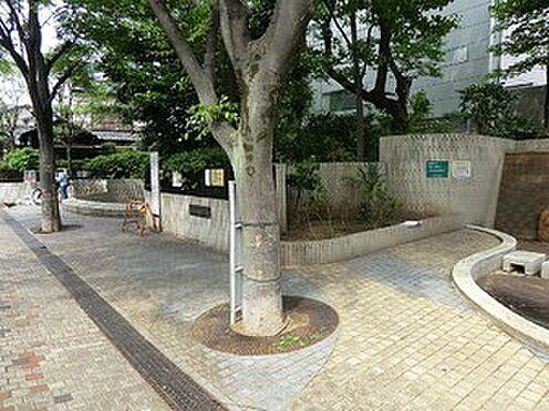 マンション(建物全部)-豊島区西池袋3丁目 谷端川親水公園
