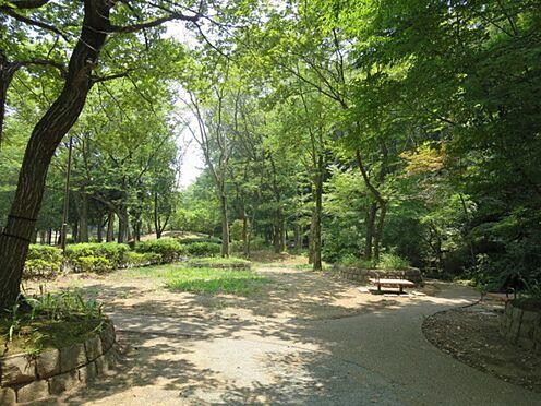 中古マンション-横浜市緑区霧が丘6丁目 霧が丘公園まで約210m