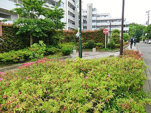アパート-渋谷区西原3丁目 西原いこい公園
