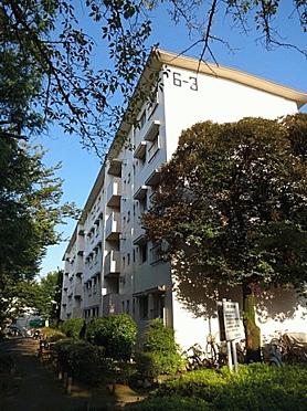 中古マンション-川崎市多摩区三田4丁目 外観
