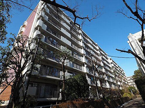区分マンション-浦安市富岡3丁目 7階、南東向きで日当たり・通風良好です。