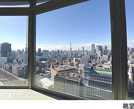 マンション(建物一部)-港区東新橋1丁目 リビングから東京タワーを望みます