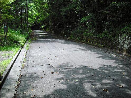 土地-北佐久郡軽井沢町大字長倉 敷地から南側の様子