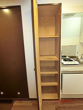 マンション(建物一部)-世田谷区野沢3丁目 キッチン横収納