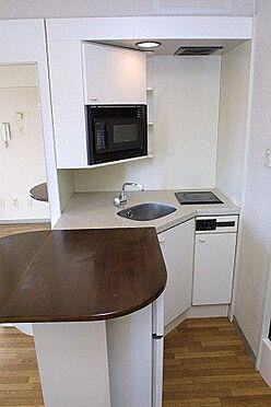 マンション(建物一部)-札幌市東区北八条東1丁目 キッチン