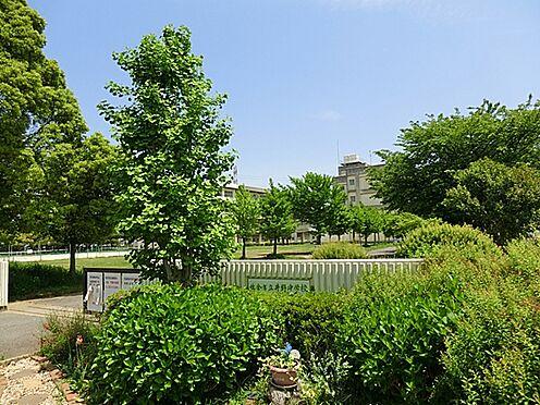 マンション(建物一部)-佐倉市宮ノ台6丁目 井野中学校