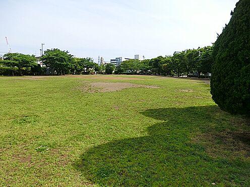 中古マンション-市川市湊新田1丁目 行徳駅前公園(307m)